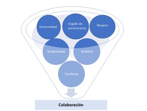 bases colaboración